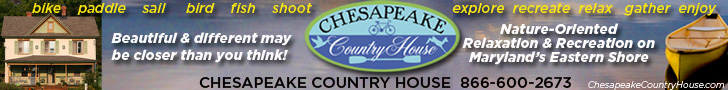Chesapeake Country House